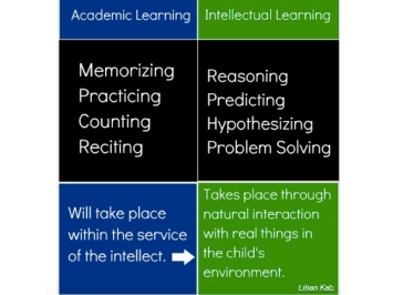 academic vs intellectual.001